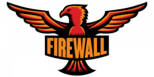Founder, Consultant, Tournament Organizer and Commentator for TeamFireWall GbR